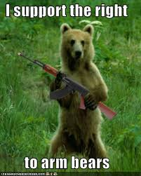 Right To Bear Arms Meme - the right to bear arms