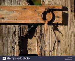Wooden Barn Door by Old Wooden Barn Door With Worn Grain Faded Paint And Iron Ring