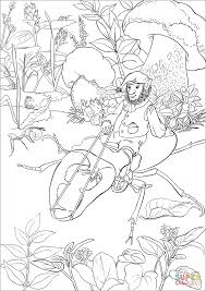 leprechaun is riding a beetle coloring page free printable