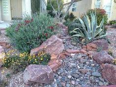 desert landscaping ideas high desert flower garden desert