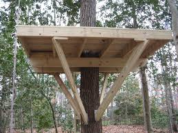 Free House Building Plans by Tree House Building Plans Free Escortsea