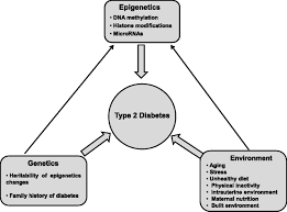 The Interplay Of Physical And Type 2 Diabetes Demystifying The Global Epidemic Diabetes