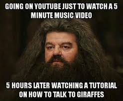 Meme Youtube Videos - went to youtube to watch one thing crazy random video watching