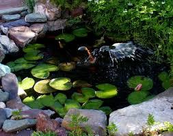 aquascape garden pond fountain ideas garden pond ideas raised