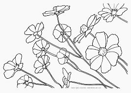 coloring flowers u2013 letmecolor