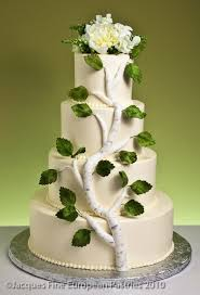 13 best birches cake images on pinterest birches pretty cakes