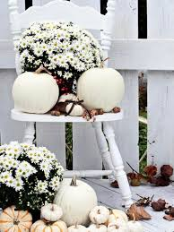 Outdoor Fall Decorations by 30 Charming White Pumpkin Fall Decorations For A Festive Dinner