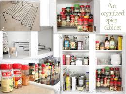 cabinet organizers kitchen fresh at nice spicecabinetcollage