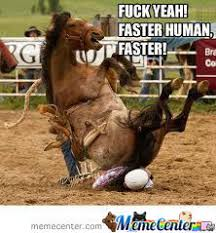 Horse Riding Meme - horse rider riding by nedim nickelto meme center