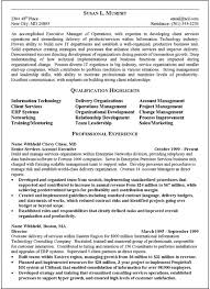 Example Of Executive Resume by Executive Summary Resume Executive Summary Resume Example Resume