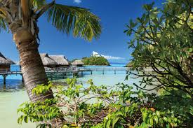bora bora private island escape out of office tailor made
