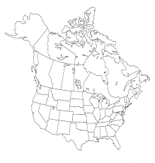 Blank United States Map by Outline Map Of Usa Canada And Mexico With North America Map Us Us