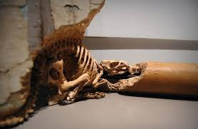 wood carvings by maskull lasserre