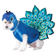 Peacock Halloween Costumes Adults Peacock Halloween Costumes Buycostumes