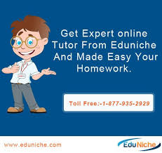 EDU Niche Unveils Interactive Website for Online Tutoring at Affordable Rates http   bit