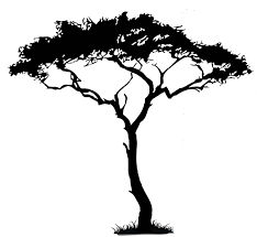 realistic clipart tree pencil and in color realistic