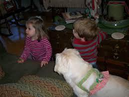 must love pekes buffy and ollie u0027s christmas house