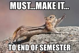 must make it to end of semester must make it chipmunk meme