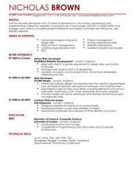 Plain Text Resume Example by Web Developer Cv Example For It Livecareer