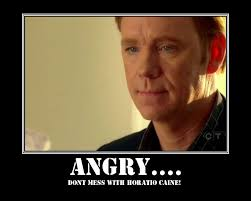 Horatio Caine Meme - horatio meme 28 images horatio csi miami meme memes pin funny