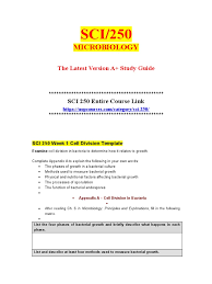 sci 250 sci250 doc pneumonia respiratory tract