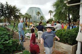 Botanical Garden San Antonio Tx Community Vegetable Gardens Topic Of Nov 5 Program At San Antonio