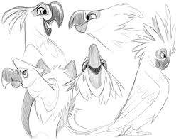 bird sketches adamation
