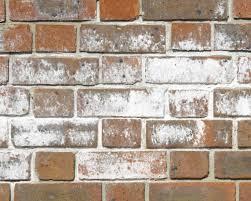 sandtex 10 year exterior gloss paint charcoal black 750ml at wilko