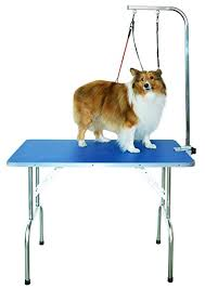 large dog grooming table amazon com shelandy professional pet grooming table with double