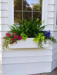 simple details create overflowing window boxes and planters