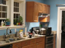 19 kitchen small design ideas effect picture of american