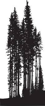 a vector silhouette illustration of a tree line of dense forest