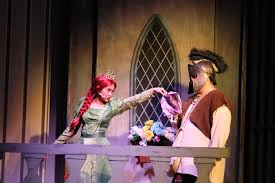 shrek the musical behind the curtains u2013 wildcat news