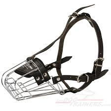 belgian shepherd weight chart wire cage belgian malinois muzzle for different activities m4