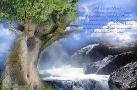 natur sprüche spiritualitaet fuer anfaenger ich bin selbst natur