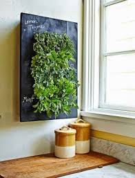 indoor herb gardens norse white design blog