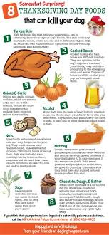 8 somewhat surprising thanksgiving day foods that can kill your