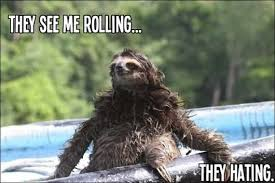 Funny Sloths Memes - they see me rolling they hating funny sloth memes images wall4k