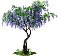 4ft potted purple color artificial wisteria tree dongyi 11ft artificial bend trunk purple wisteria tree