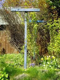 spring berries minerva u0027s garden blog