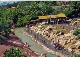 ranch texas park lanzarote playa real and flamingo playa