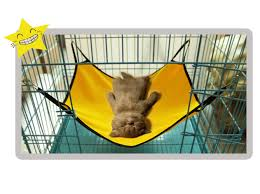 portable load bearing pet sleeping hammock cat dog indoor hammock