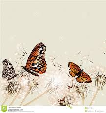 floral background with dandelions and butterflies for design stock