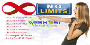 ssd web hosting cheapest fastest the best web host machine