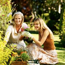 Family Garden Gardening In South Florida Boca Raton Delray Beach Boynton