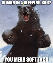 Patient Bear Meme - overly bearly bear meme generator imgflip