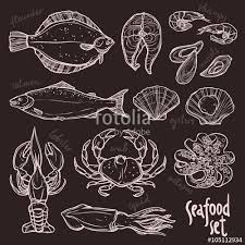 sketch seafood collection hand drawn illustration with lobster