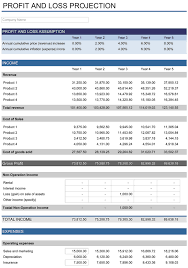 Project Profit And Loss Template Excel 5 Year Financial Plan Free Template For Excel