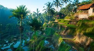 best destination wedding locations best wedding destinations search the best destination wedding