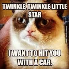 Meme Generator Grumpy Cat - 60 best grumpy cat memes you will always love